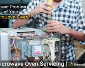 microweb-servicing