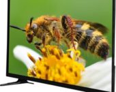 32-Inch-Smart-HD-Color-LCD-LED-TV-with-Cheap-Price