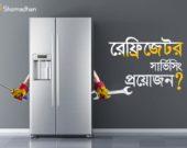 Refrigerator Servicing