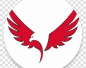 bird-eagle-logo-clip-art-bird